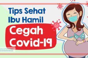Infografis Tips Sehat Ibu hamil (Solopos/Whisnupaksa)