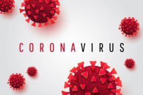 Laboratorium di Wuhan Akui Punya 3 Strain Virus Corona, Tapi...