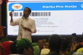 Mau Dapat Kartu Pra-Kerja dari Jokowi? Pendaftaran di Sini