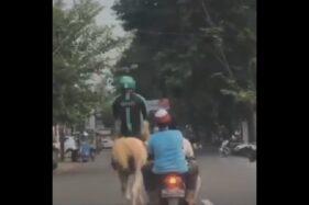 Viral! Bukan Pakai Motor, Rider Ojol di Kampus UMS Tunggangi Kuda