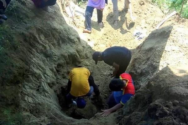 Niat Cari Rumput, Petani Sragen Temukan Fosil Kepala Kerbau