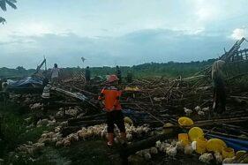 2 Kecamatan di Sragen Disapu Angin Puting Beliung, Rumah dan Kandang Ayam Rusak