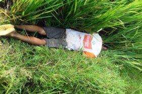Pria Ngrampal Sragen Meninggal Diduga Kesetrum Jebakan Tikus di Sawah