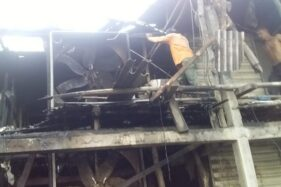 Kondisi kandang ayam milik Kardimin, di Desa Sukorejo, Kecamatan Tegowanu, Kabupaten Grobogan, setelah ludes terbakar, Sabtu (30/5/2020) sore. (Istimewa/Damkar Grobogan)