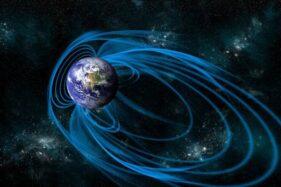 Ilustrasi medan magnet bumi. (Istimewa)