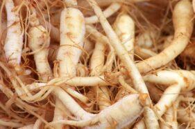 7 Tanaman Herbal Ini Dipercaya Mampu Halau Stres dan Cemas