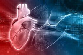 Ini Fakta Henti Jantung, Penyebab Didi Kempot Meninggal