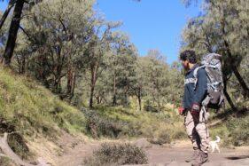 Demam, 1 Pendaki Gunung Lawu Asal Sragen Diisolasi 2 Jam