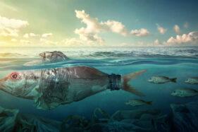 Sampah di Laut Menumpuk, Botol Plastik Terurai 450 Tahun