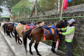 Pelaku usaha sewa kuda menunggu konsumen di kawasan Grojogan Sewu, Tawangmangu, Karanganyar, Minggu (12/7/2020). Sejak dua pekan lalu mereka kembali beraktivitas setelah sempat libur selama lima bulan. (Solopos/Candra Mantovani)