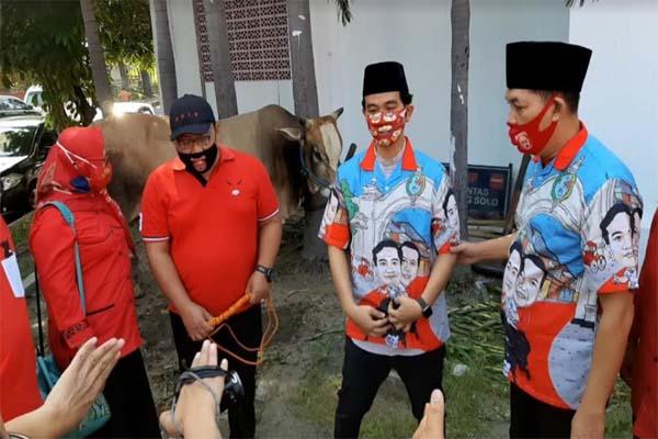 Gibran Serahkan Sapi Kurban ke PDIP, Muhammadiyah & NU Solo