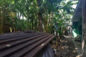 Penyebab Kematian Terduga Teroris Cemani Sukoharjo Samar, Keluarga Minta Pejelasan