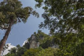 Provinsi Termuda di Indonesia Ini Punya 5 Tempat Wisata Eksotis