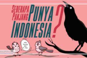 Infografis Ukuran Mr P Pria di Dunia, Seberapa Panjang Indonesia?