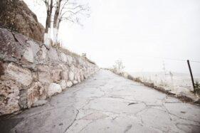 Ilustrasi jalan kampung. (Freepik)