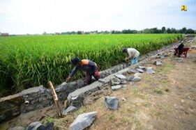 BBWSBS Gelar Padat Karya Irigasi, Sasar 92 Desa di Jateng dan Jatim