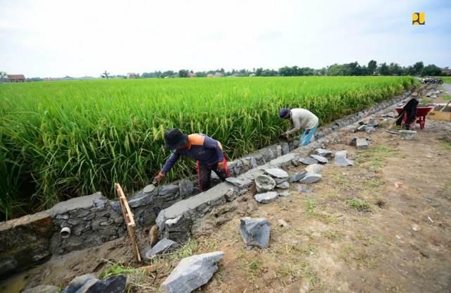 Sasar Petani, BBWSBS Gelar Padat Karya di 550 Desa di Jateng dan Jatim