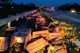 Ribuan butir jeruk berserakan di jalan tol seusai terjadi lakalantas antara dua truk di KM 541, Desa Bumiaji, Gondang, Sragen, Rabu (5/8/2020) pagi. (Istimewa/David Efendy)