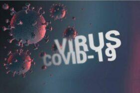 Ilustrasi virus corona pemicu Covid-19. (Antara-Dok.)