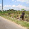 Petani di Klaten Tanam Aneka Bibit Demi Dapat Ganti Rugi Lebih Banyak dari Tol Solo-Jogja
