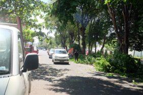 DLH Solo Pangkas Pohon Tepi Jalan, Laporkan Ancaman di Sekitarmu!