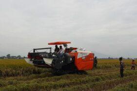 Alat mesin pertanian (Alsintan) combine harvester. (Istimewa)