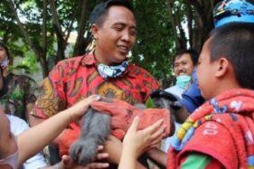 Bikin Heboh, Ipan Si Owa Jawa di Semarang Ditembak Bius