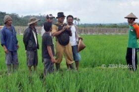 Asyik, Insentif 111 Penyuluh Pertanian di Karanganyar Diwacanakan Naik 4 Kali Lipat