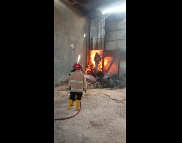 Kebakaran Sukoharjo: Timbunan Serbuk Kayu PT Solo Rimbaniaga Telukan Terbakar