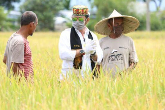 Menteri Pertanian (Mentan) Syahrul Yasin Limpo (tengah) bersama para petani (istimewa/Kementan)