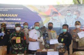 Pemusnahan bibit dan benih impor tak berizin di Instalasi Karantina Pertanian Sorkarno Hatta, Tanggerang, Rabu (21/10/2020). (istimewa/Kementan).