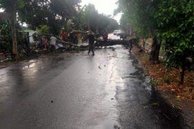 Datang Bersama Angin Kencang, Hujan Pertama di Madiun Tumbangkan Pohon