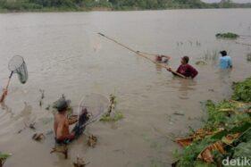 Fenomena Bladu, Musuh Paling Besar Ikan-Ikan Penghuni Bengawan Solo