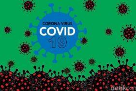 Ilustrasi pandemi Corona. (Detik.com)