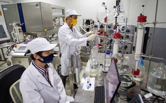 Peneliti beraktivitas di ruang riset vaksin Merah Putih di kantor Bio Farma, Bandung, Jawa Barat, Rabu (12/8/2020). (Antara-Dhemas Reviyanto)