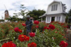 Ini 10 Cara Fengsui Atur Taman Rumah
