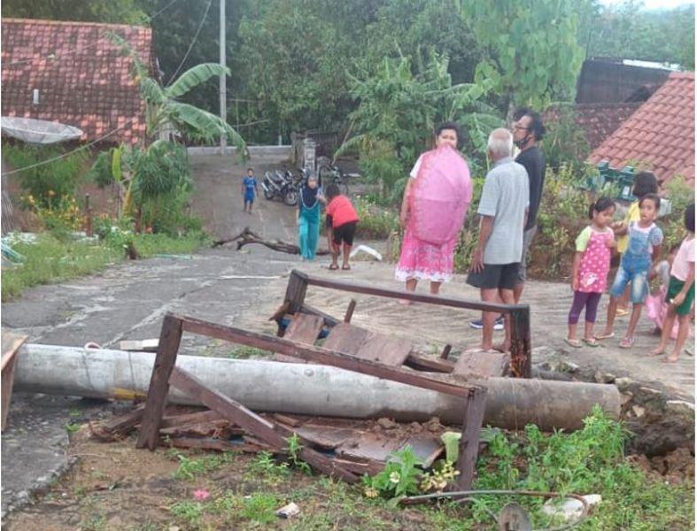 Pohon Tumbang Terjadi di Dua Kecamatan di Wonogiri, Kerugian Belasan Juta Rupiah