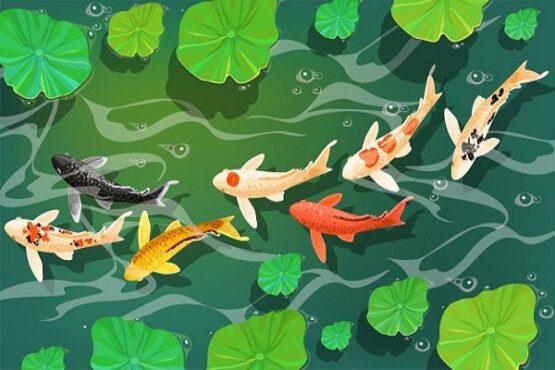 Lukisan ikan koi. (Freepik.com)