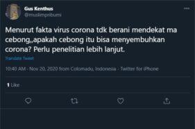 Capture cuitan cebong kebal corona. (Twitter)