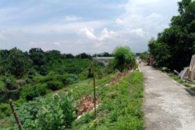 Banyak tanaman tumbuh di tanggul Sungai Pepe Kelurahan Sangkrah, Kecamatan Pasar Kliwon, Solo, Senin (23/11/2020). Seorang pengendara sepeda motor melintasi jalan di tanggul tersebut. (Wahyu Prakoso/Solopos)