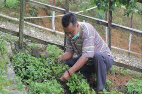 Tim Lembaga Penelitian dan Pengabdian (LPPM) Universitas Sebelas Maret (UNS) berhasil membantu petani Desa Temboro, Kecamatan Karang Tengah, Wonogiri dengan membuat janggelan instan (istimewa)