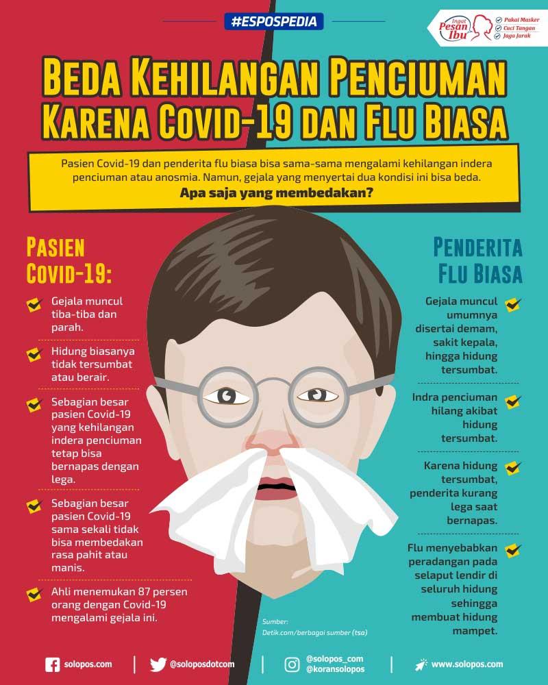 Infografis Penciuman (Solopos/Whisnupaksa)