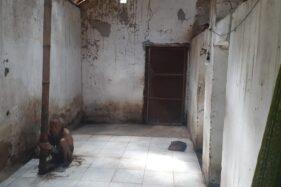 ODGJ di Madiun Dipasung, Pemdes Akan Bujuk Keluarga Melepaskan