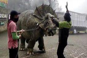 Cek! Ini Fakta di Balik Video Viral Dinosaurus Turun dari Truk & Ngamuk di Magetan