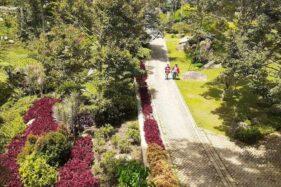 Wisata Watu Rumpuk Madiun Sudah Buka, Jumlah Pengunjung Masih Minim