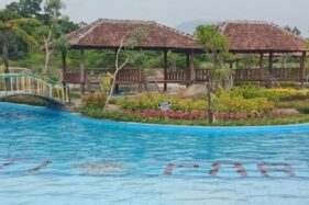 Janti Park Klaten Terlihat Cantik dan Cocok Buat Selfie, Ternyata Ini Rahasianya