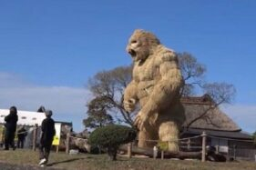 Usir Corona, Penduduk Desa di Jepang Bikin Patung Gorila