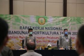 Mentan SYL: Pembangunan Hortikultura di 2021 Harus Lebih Baik