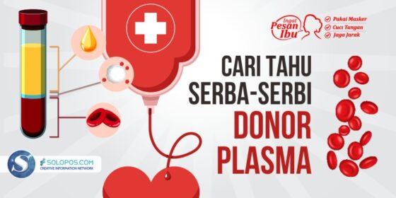 Infografis Donor Plasma (Solopos/Mahfudh Burhanuddin)