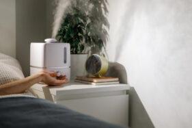 Berikut Tips Cara Mencegah Polusi di Dalam Rumah